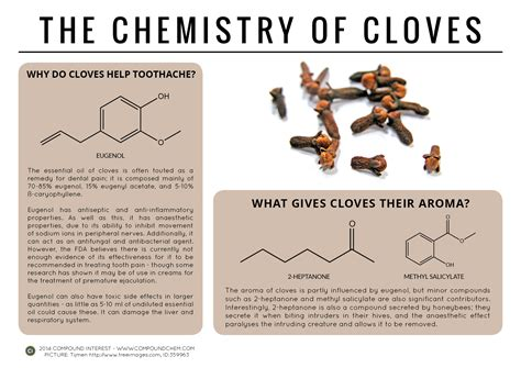 Compound Interest   Guarding Against Toothache & Premature  ? The Chemistry of Cloves