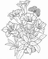 Coloring Flower Pages Detailed sketch template
