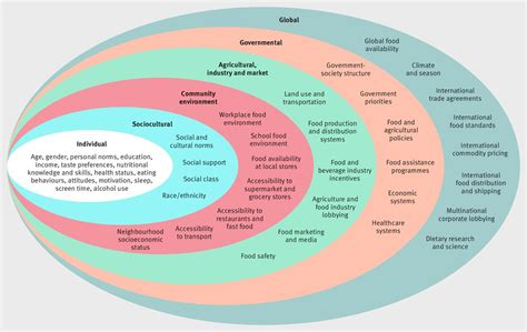 role  government policy  nutritionbarriers
