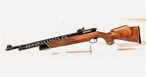 Gun Sport  Senapan Angin