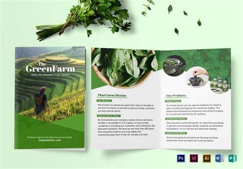landscape brochure templates  psd ai