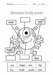 31 Label The Eye Worksheet