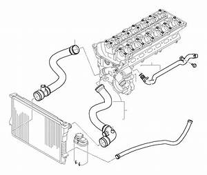 Bmw 323i Water Hose  Cooling  Hoses  Engine