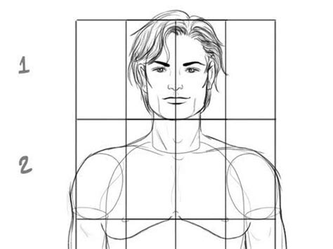 comment dessiner un corps masculin les proportions de base