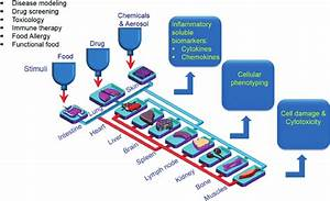 A Schematic Diagram Of A Microfluidic Approach For