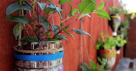 Upcycled Bottle Planters Hometalk