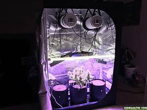 Led Grow Set : 2x4 grow tent setup contemporary 2 4 lighthouse easymakeup club throughout 9 grow ~ Buech-reservation.com Haus und Dekorationen