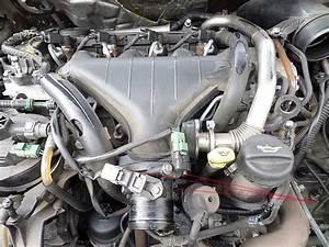 Vanne Egr 407 Hdi 136 : 2 0 hdi 136 d montage voix respiratoires du turbo la culasse vanne egr ~ Gottalentnigeria.com Avis de Voitures