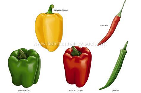 piment en espagnol alimentation et cuisine gt alimentation gt l 233 gumes gt l 233 gumes fruits image dictionnaire visuel