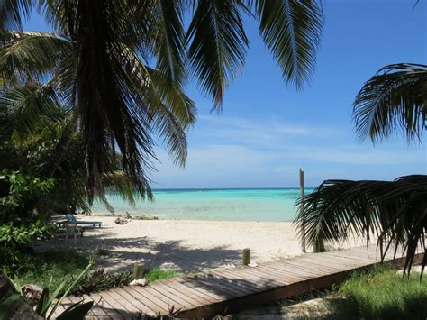 Ambergris Caye Vs Placencia Belize Buying A Beach Home