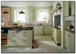 Light Green Kitchen Cabinets by Recommended Light Green Kitchen For You Home And Cabinet
