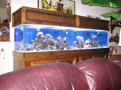 Selling My 210 Gallon Reef Sanctuary
