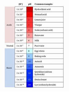 Pin Ph Scale Examples Of Acids And Bases on Pinterest