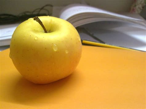 home design software سیب زرد من design photos عکاسی های من
