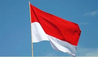 Indonesia Sweden Indonesian Diet Eating Cursing Starvation