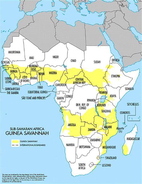 Irin  Eyeing The Wealth Of The Guinea Savannah