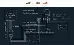 Indicator Wiring Diagram Motorcycle