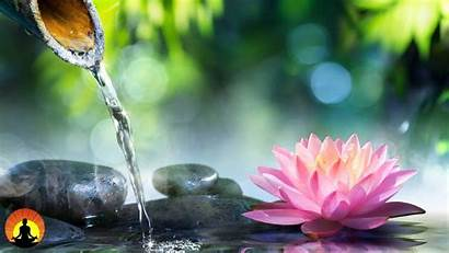 Zen Meditation Relaxing Relaxation Soothing Calming