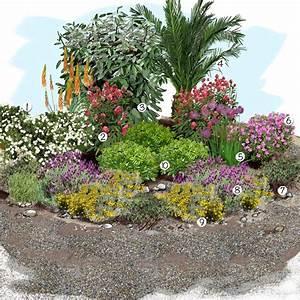 les 25 meilleures idees de la categorie jardin sec sur With marvelous quelles plantes pour jardin zen 0 quelles plantes pour son jardin sec idees et conseils utiles
