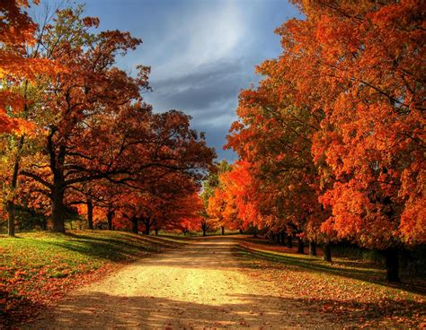 Autumn Lock Screen Wallpapers by Desktop Wallpaper Fall 183 Wallpapertag