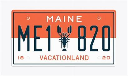 Maine License Plate Plates States Cooley Sean