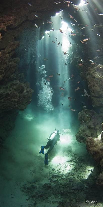 Diving Underwater Mergui Archipelago Scuba Dolphin Tours