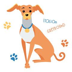 foto de Search photos sighthound