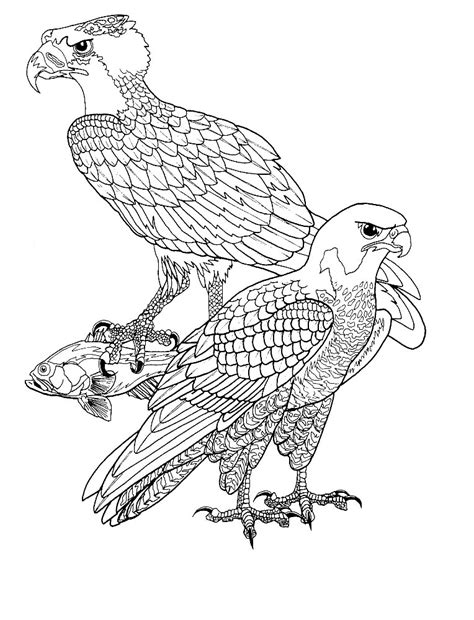 2 Vogels Kleurplaat by Kleurplaten Vogels Bewegende Afbeeldingen Gifs