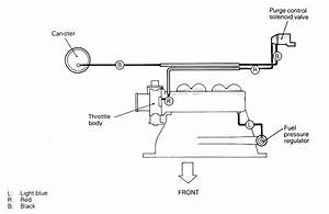 Electronic Emission Controls Diagram