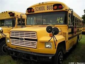 School Buses - ... School Bus