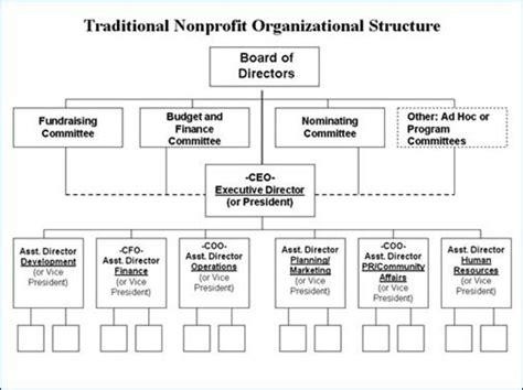 traditional nonprofit organizational structure business