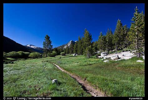 Picturephoto Pacific Crest Trail Lyell Canyon Yosemite