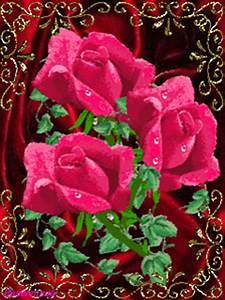 Download Beautiful Roses Animated Screensaver