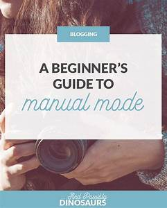 A Beginner U0026 39 S Guide To Manual Mode  U2013 And Possibly Dinosaurs
