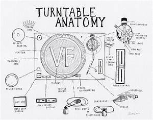 Turntable Anatomy  An Interactive Guide To The Key Parts