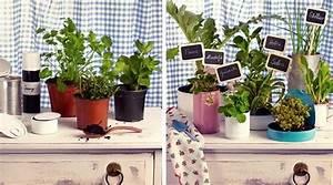 un mini jardin d39interieur tutos et conseils With mini jardin d interieur