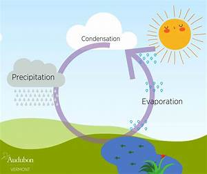 The Water Cycle Revisited