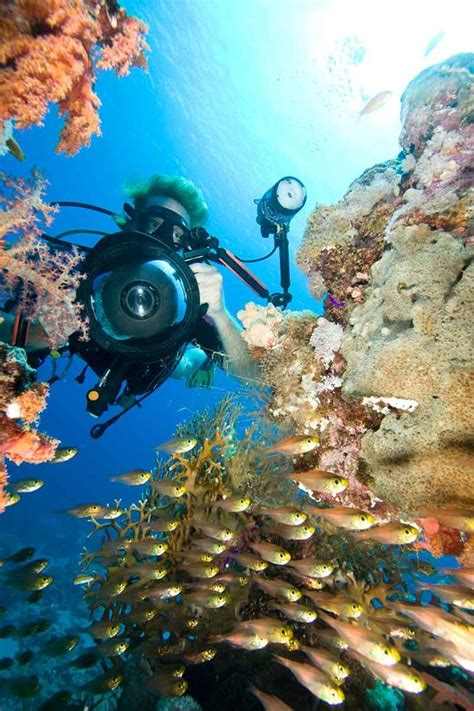 Dive Hacks 20 Underwater Photography Tips And Tricks From