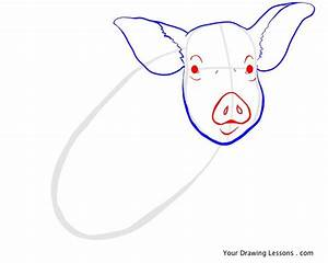 How To Draw A Pig – Your Drawing Lessons