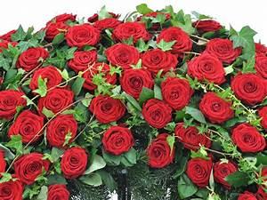 1 Rote Rose Bedeutung : kranz rote rosen und efeu f tschl blumen wien g rtnerei wien trauerfloristik kr nze ~ Whattoseeinmadrid.com Haus und Dekorationen