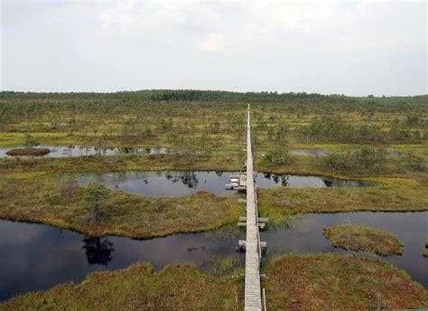 das moorschutzgebiet endla  nord jogevamaa nordischinfo