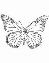 Coloring Butterfly Monarch State Insect Alabama Pages Popular Coloringhome sketch template