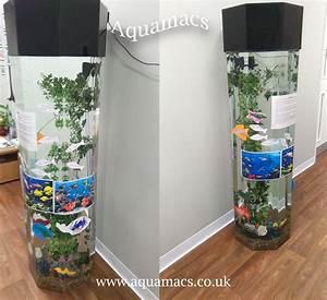 New Column Acrylic Aquarium Install