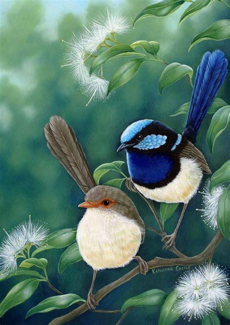 blue wren inspired arts  crafts images