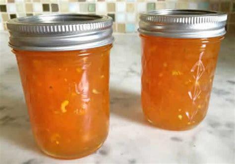 confiture orange thermomix  delice pour votre petit