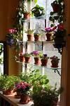 Best 25+ Indoor window garden ideas on Pinterest window indoor garden pods