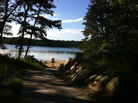 Little Cliff Pond  Picture Of Nickerson State Park