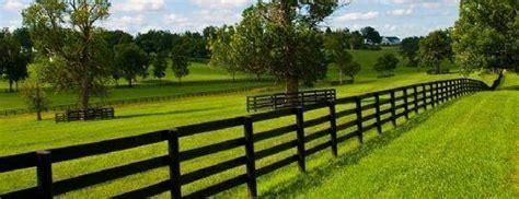 paint  vinyl fence trustedpros