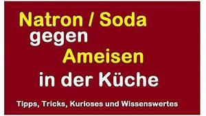 Natron Gegen Schweiß : natron gegen ameisen in der k che bek mpfen vertreiben mit soda hausmittel ohne chemie ~ Orissabook.com Haus und Dekorationen