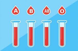 E Herd Test : sangue sistema abo resumo escolar ~ Watch28wear.com Haus und Dekorationen